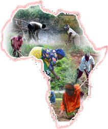farming_africa_small